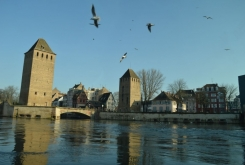 Strasbourg_2018_011