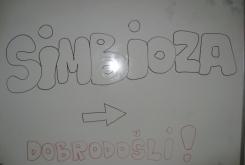 simbioza131415