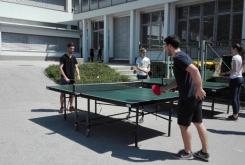 sportni_dan_maj_2017_011